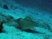 Naturablue Diving Center