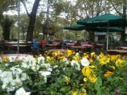 Özgen Çay Bahçesi