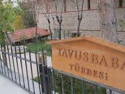 Tavusbaba Türbesi