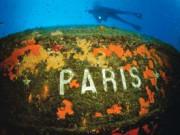 Paris Batığı