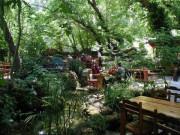 Çınar Restaurant