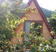Ağva Tree House