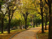 Abbasağa Parkı