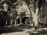Çırağan Caddesi