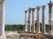 Kastamonu Pompeipolis Antik Kenti