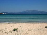 Çeşme Paşalimanı Plajı