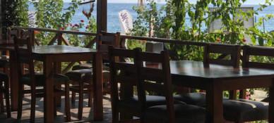 Mavi Yeşil Bungalov Pansiyon & Restaurant