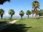 Karaağaç Plajı