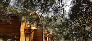 Serdivan Konak Narlı Otel