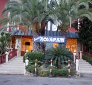 Club & Grand Aquarium